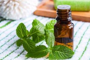 utiliser-huile-essentielle-menthe-poivree